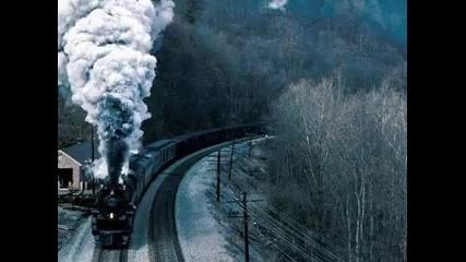 Kara Tren Gecikir