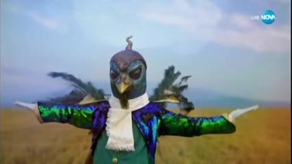 Паунът изпълнява Volare на Domenico Modugno | Маскираният певец