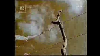 Clannad - The Hunter