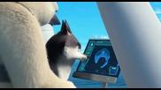 Penguins of Madagascar Bg Audio- Пингвините от Мадагаскар Bg audio (2014)