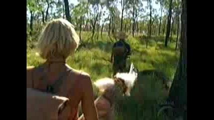 Survivor Australia Fallen Survivors