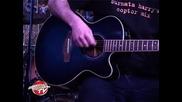Сърмата Хари - Поет с китара в Sunday Art Report