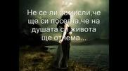 Ти Сърцето Ми