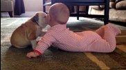 Булдог и Бебче - целувка