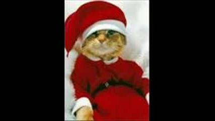 Коледна Песничка - Много Смях :d