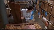 Скъпа Уголемих Детето Филм С Кери Ръсел Тв Honey I Blew Up the Kid 1992