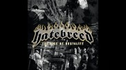 Hatebreed - Live for This (превод)
