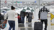 Southwest Baggage Handlers Accused of Running Marijuana Smuggling Ring