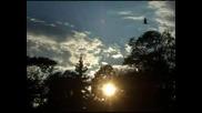 Зайди, Зайди Ясно Слънце