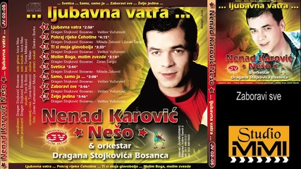 Nenad Karovic Neso - Zaboravi sve (audio 2002)