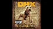 Една Велика Песен ! Dmx - The Rain