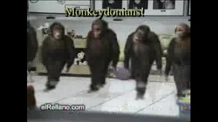 Танца на македонците (monkeydonian dance)
