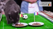 Звездният отбор на Франция или златното поколение на Белгия - виж кой ще стигне до мач за титлата!