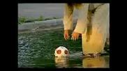 Скрита Камера - Мъж Ходи По Вода