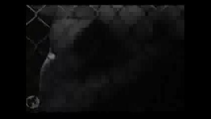 Клипче За Mark Wahlberg