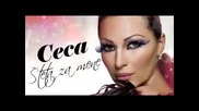 = Ceca 2011 - Steta Za Mene =