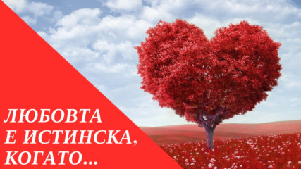 Любовта е истинска, когато...