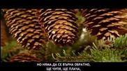 [превод] Няма да се върна обратно ~ Ч Р Д , agripina ~ Konstantinos Galanos - De tha kano piso