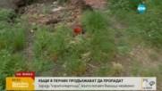 """Къщи в Перник продължават да пропадат заради """"хората-къртици"""""""