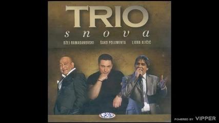 Sako Polumenta - Nije muski ali moram - (Audio 2010)