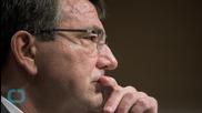 Defense Secretary Testifies to Senate: We Have 60 Rebel Trainees