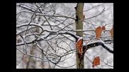Cantec De Iarna - Winter Song