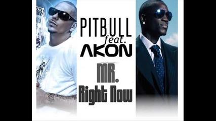 * 2011 * Pitbull Ft. Akon - Mr. Right Now