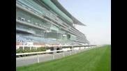 El imponente hipodromo de Meydan