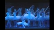 Swan lake Paris Opera 31