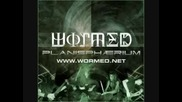 Geodesic Dome - Wormed