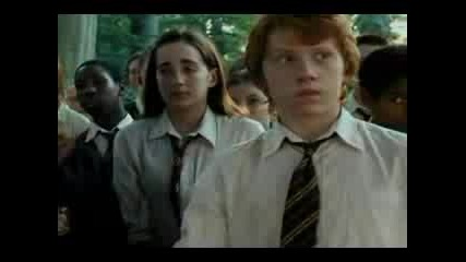 Ron And Hermione - Love