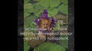 Saban Saulic - Majko Sve Ti Oprastam Превод.wmv