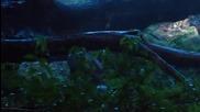Алкатраз (2012)сезон 1, Еп. 3, Бг. аудио
