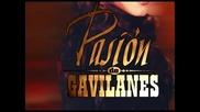 Pasion de Gavilanes.wmv