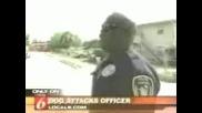Ротвайлер Напада Полицай