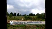 Еколози протестираха срещу сеч на борове и ели в Рила