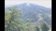 Слушай как шумат шумите (караоке)