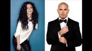 Pitbull ft. Inna - All The Things ( New songs 2014) ( New album Global Warming Meltdown )
