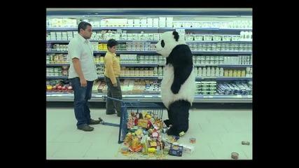 Мн смешна реклама - Никога не отказвай на панда (в супермаркета)