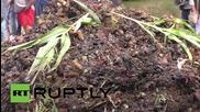 """Франция: """"Земеделието във Франция е мъртво"""" - фермери на протест"""