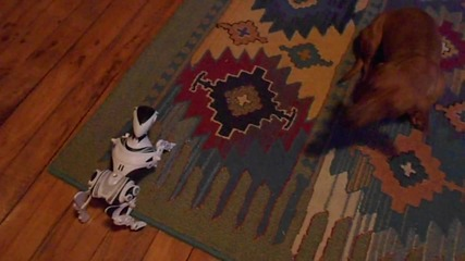 Real dog vs. Robot dog