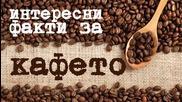 Интересни факти за кафето