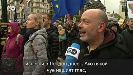 Тези британци искат да останат в ЕС