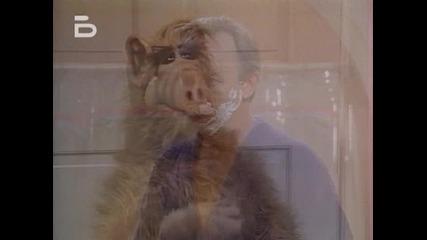 Alf.1x16