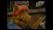 Old Time Rock and Roll - Alf and Friends