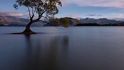 Ptw01 Lesson - 9 - New Zealand - Wanaka Tree