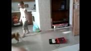 игра с куче