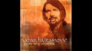 Лажи,  лажи Вере - Saban Bajramovic & Mostar Sevdah Reunion