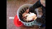 Страхотна машина за скубане на пилета