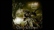 Children Of Bodom - Not My Funeral ( Relentless Reckless Forever)